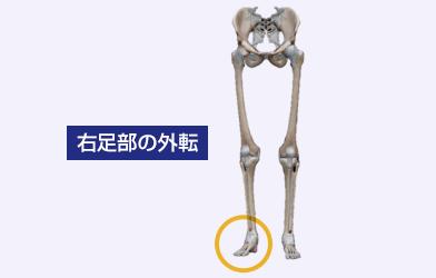 右足部の外転