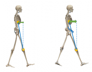 上半身質量と膝関節の距離