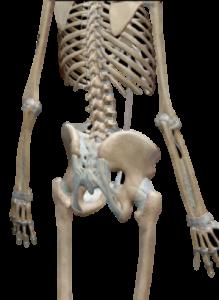 股関節,サッカー,痛み